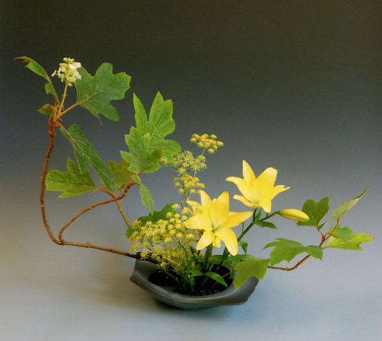 Japanese ikebana with Asiatic Lily, Oakleaf Hydrangea and Fennel..