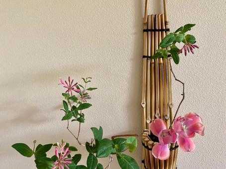 Featured Vase - Karukaya Hashirakake Some Dai