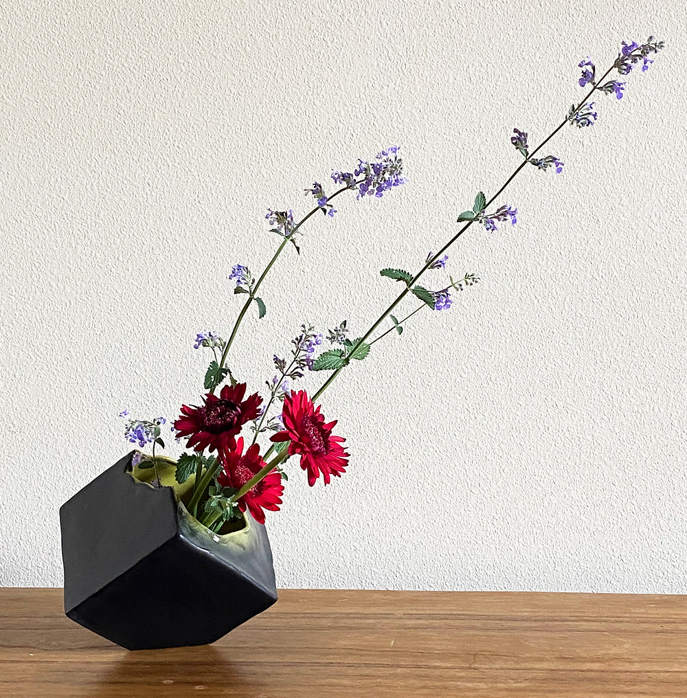 Ikebana cube vase, cat mint and gerber daisy.