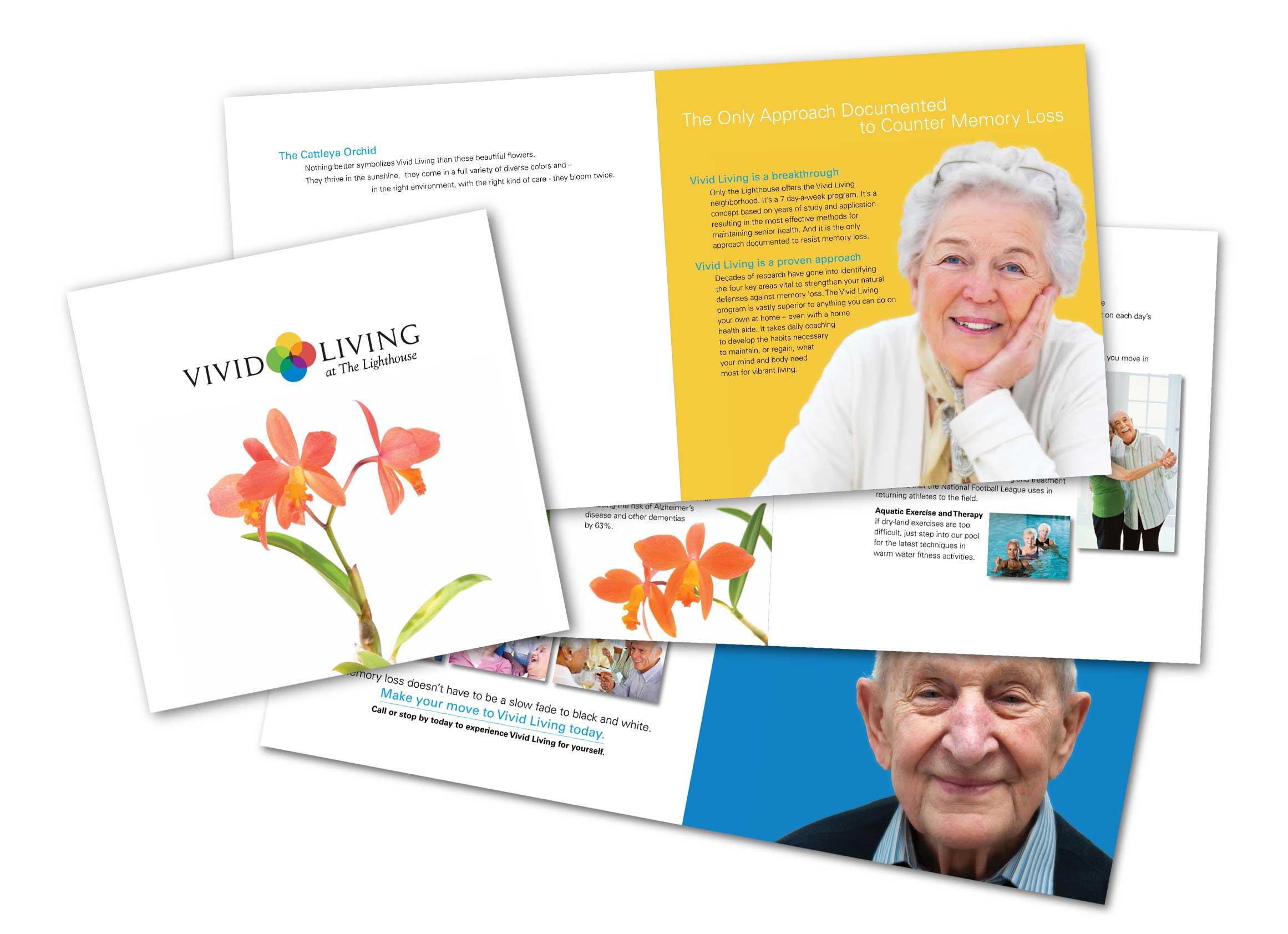 Vivid Living Brochure