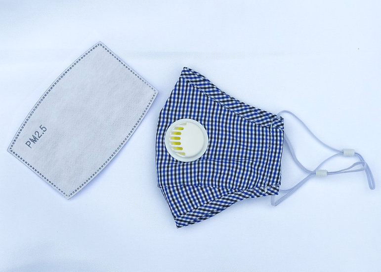 Reusable Cloth Face Mask with Respirator and Replaceable Filters (BLUE)