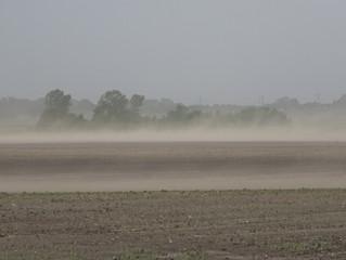June 9th, 2020 | Tropical Depression Cristobal in Illinois
