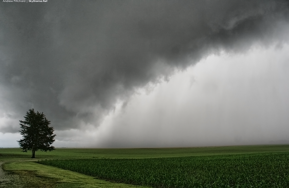 Gust front overtakes me in Philo, IL on May 30th 2015.