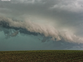 June 7th 2015 | Shelf clouds and night-time circulations