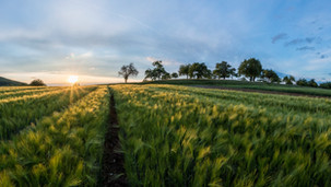 Alternative Lending Solutions for Small and Rural Businesses