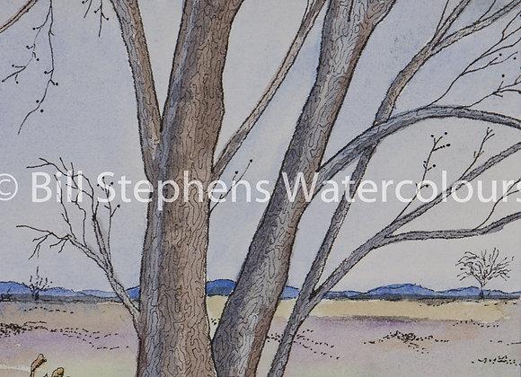 Original Watercolour Painting - Tree and dandelions