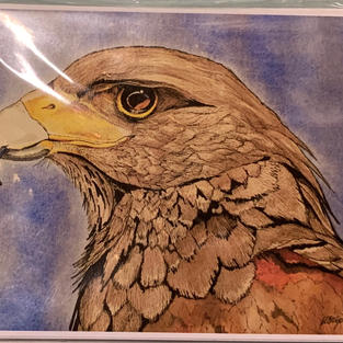 Note Cards - Bird Collection (3x5)