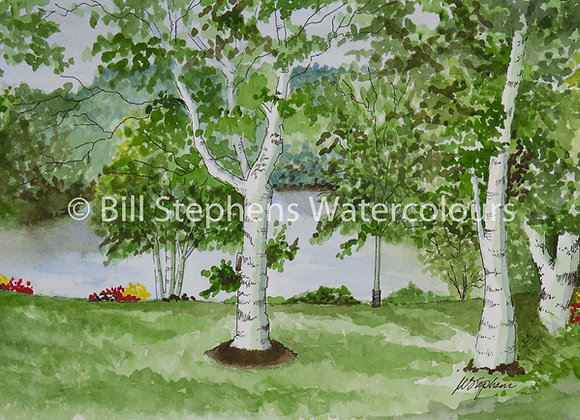 Original Watercolour Painting - Park in Otterville, Ontario
