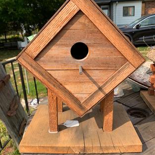 Bird House Cube - 8 x 11 x14