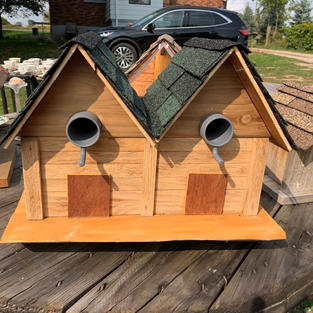 Bird Duplex - Rocking Duplex - 11 x 17 x 13