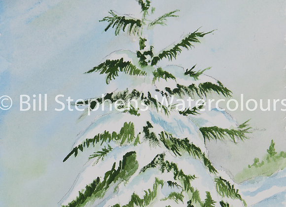 Original Watercolour Painting - Evergreen Tree in Winter