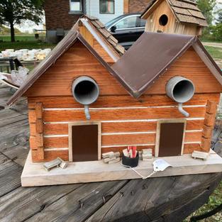 Bird Duplex - Metal Roof - 11x16x11