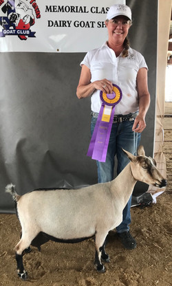 Eve winning Best in Show!