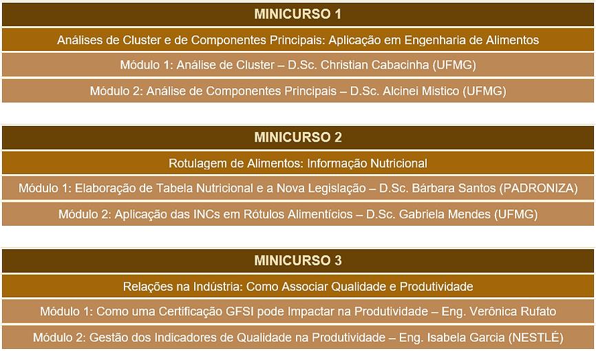minicurso 1.png
