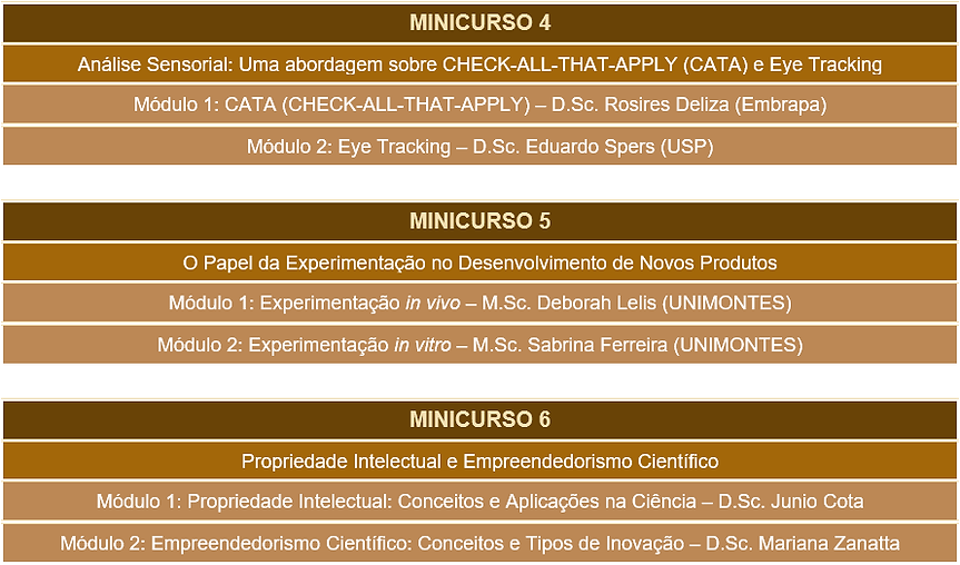 minicurso 2.png