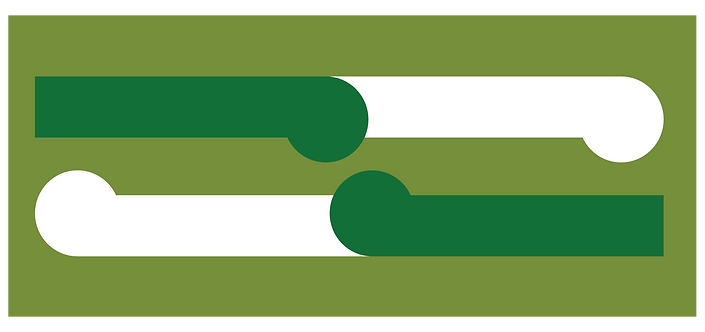 Solo green logo .png