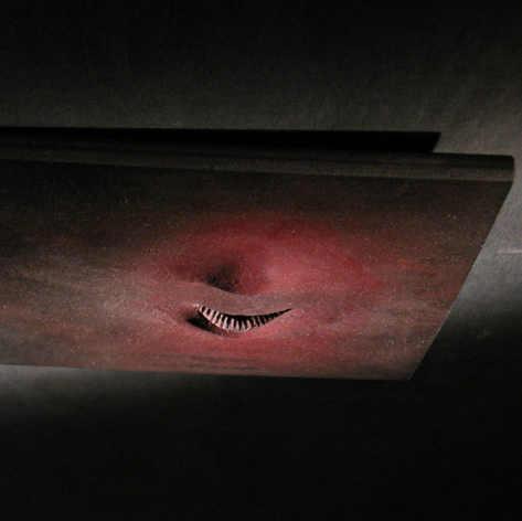 Art Primitif, Protocell (2010)