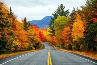 fall colors and road.jpg