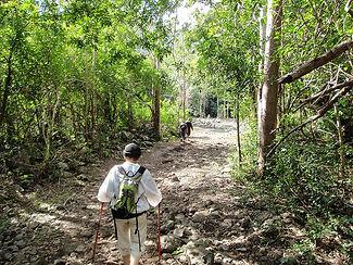 Hiking Gorges-bottom.jpg