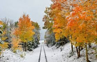 fall colors and snow.jpg