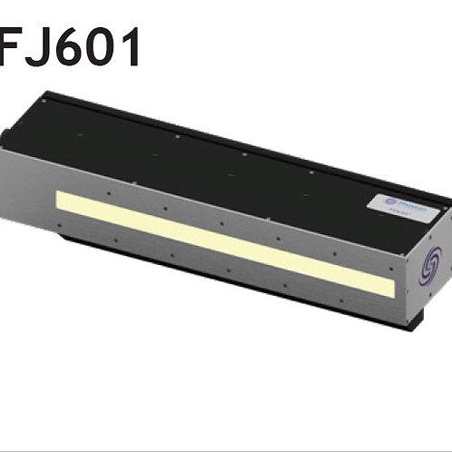 FJ601