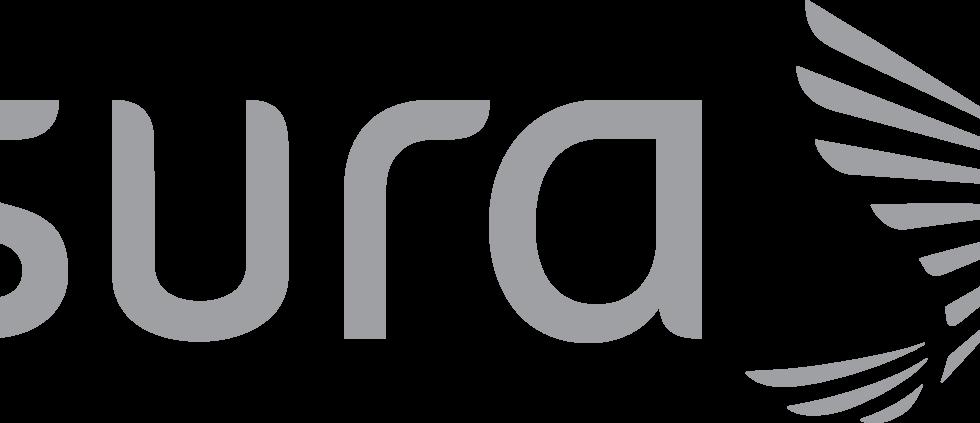 LogoSuraGris.png