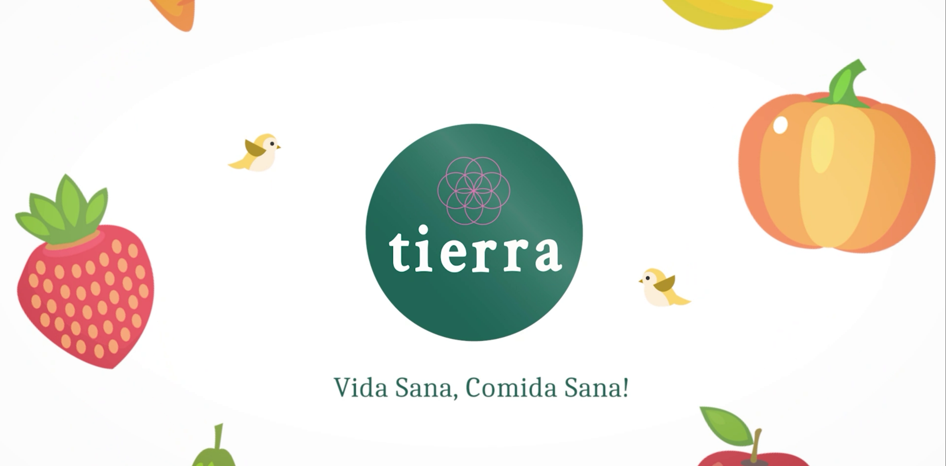 Tierra Cafe Promotional Video