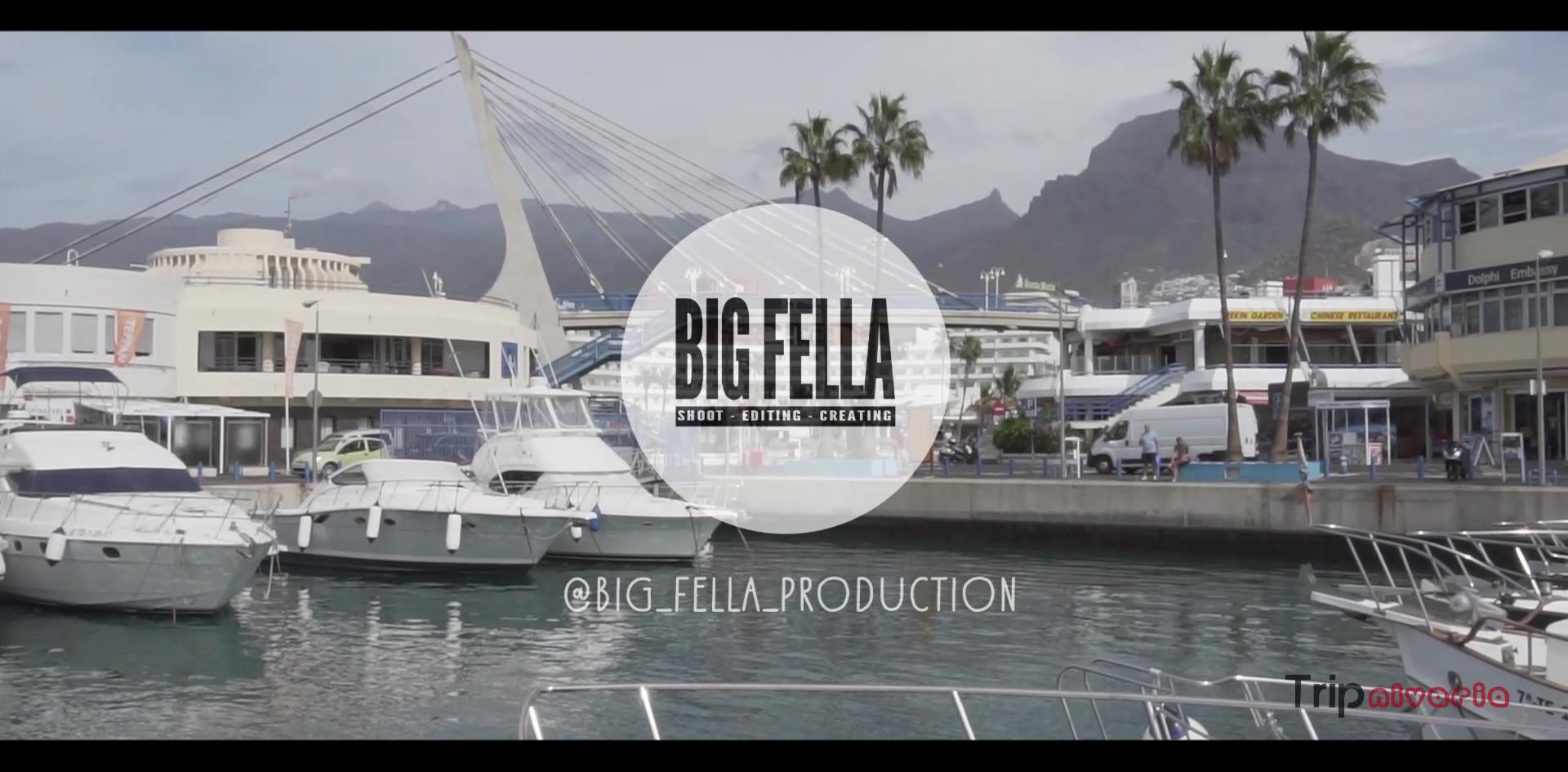 Trip Nivaria - Whale Watching Excursion - 1 Min Video