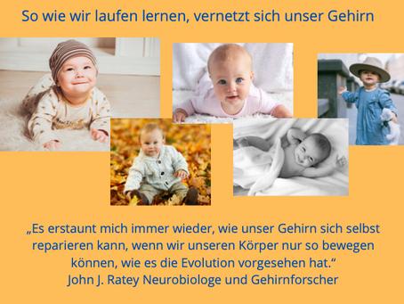 Zitat aus der Gehirnforschung