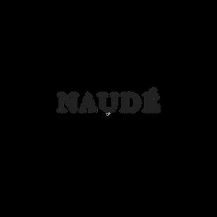 Naudé Logo.png