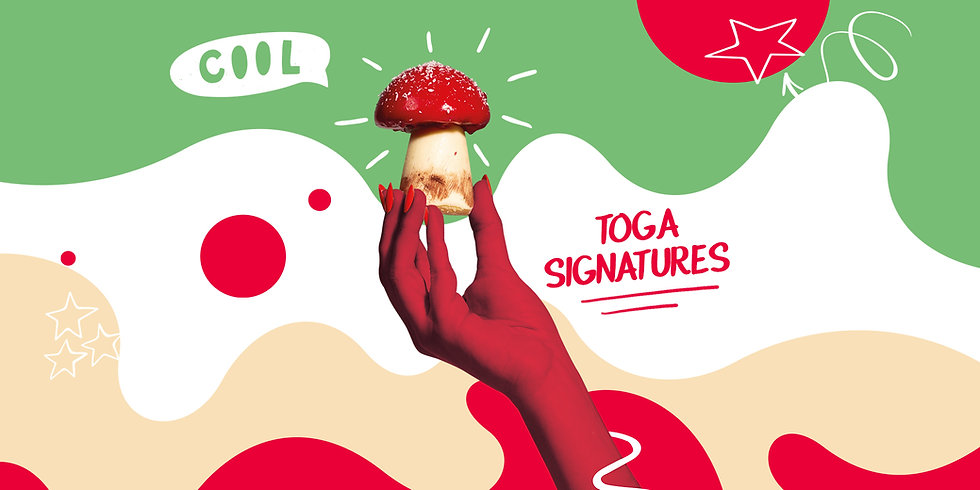 Toga signatures by Olivier Stehly.jpg