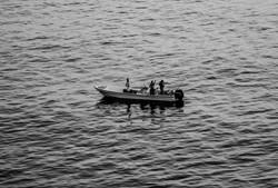 Pescan en el mar Arábigo