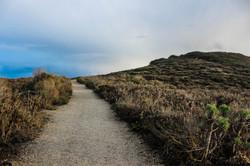 Lost in Malibú