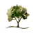 Essencia Tree Logo.png