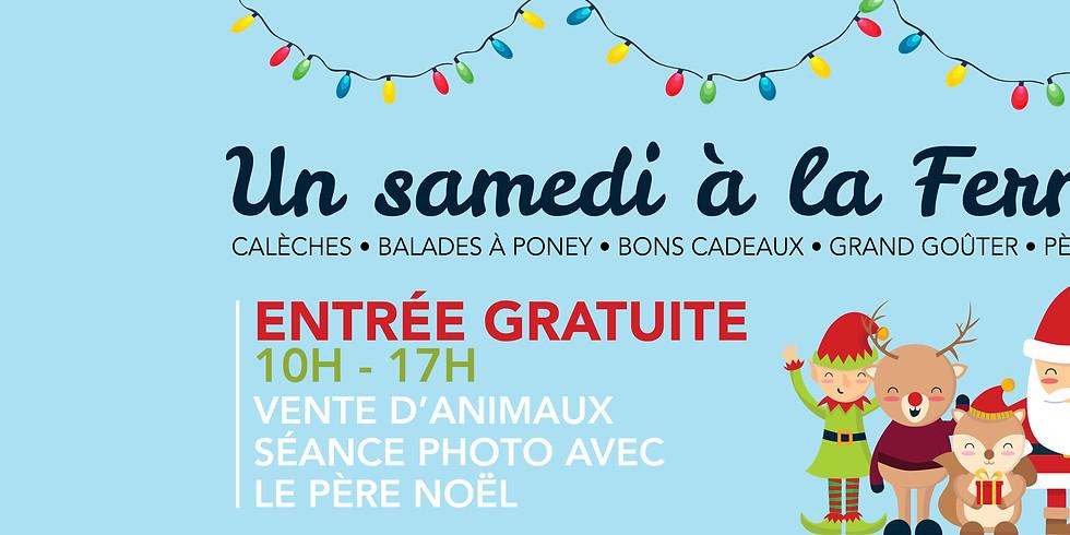 Calèche, balades à poney, goûter & Père-Noël à la Ferme !