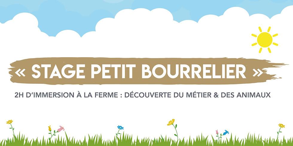 """Stage """" Petit Bourrelier """" •  + de 5 ans !"""