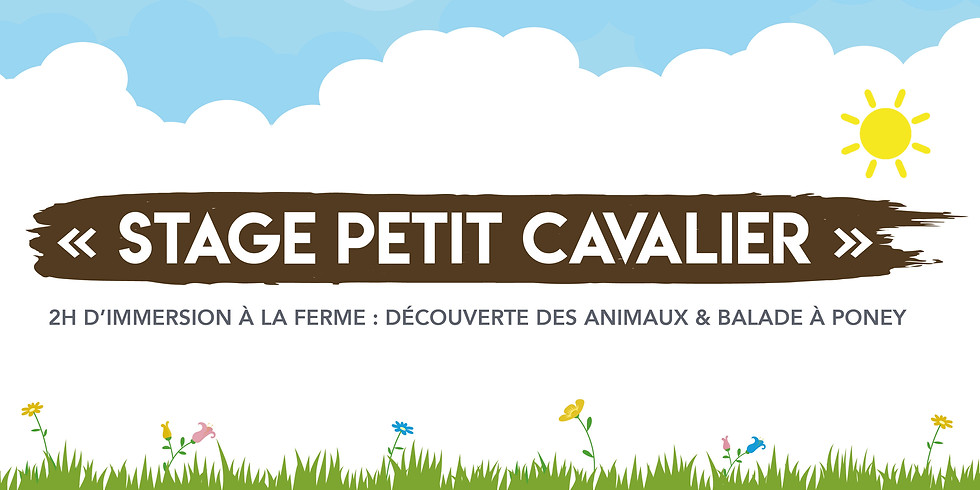 """Stage """"Petits cavaliers"""" • 3-12 ans !"""