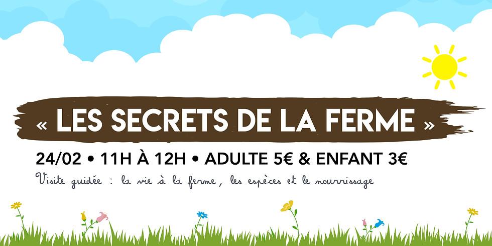 Les Secrets de la Ferme • Visite guidée !