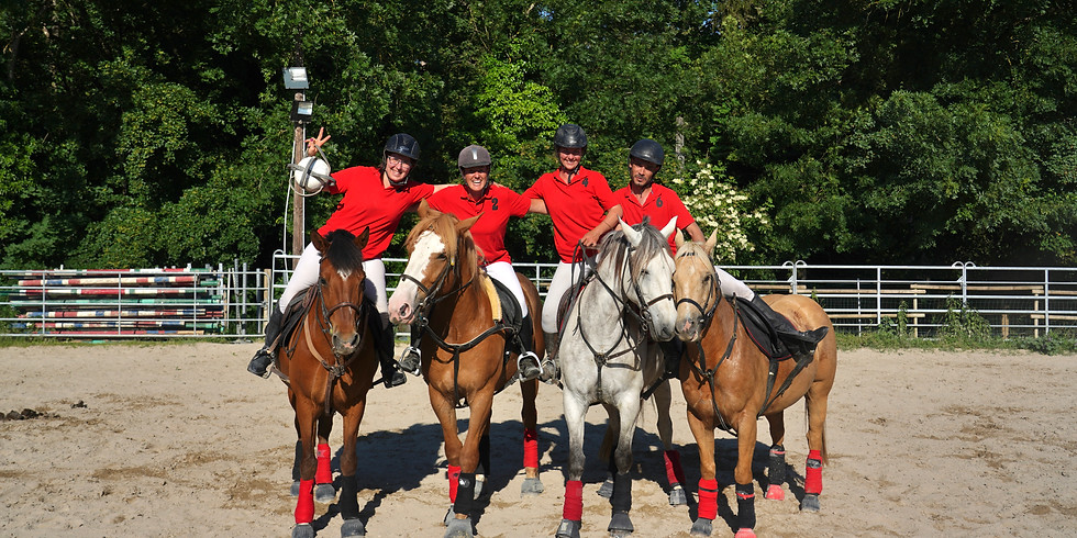 Stage Horse Ball 6-12 ans