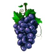 Green Grapes.png