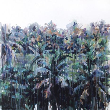 Palm grove.