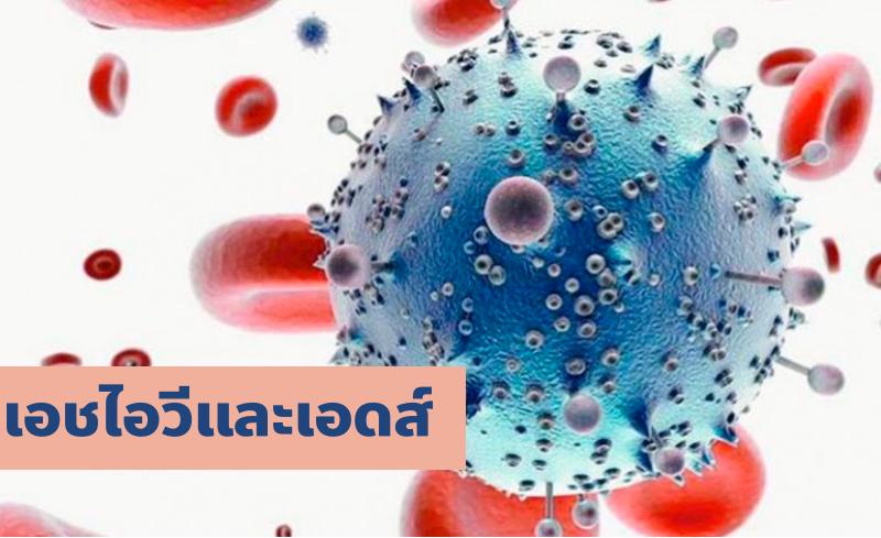 เอชไอวี เอดส์ CD4 เม็ดเลือดขาว ภูมิคุ้มกันบกพร่อง ยาต้านไวรัส ยาเพร็พ ยาเป๊ป อาการเอดส์