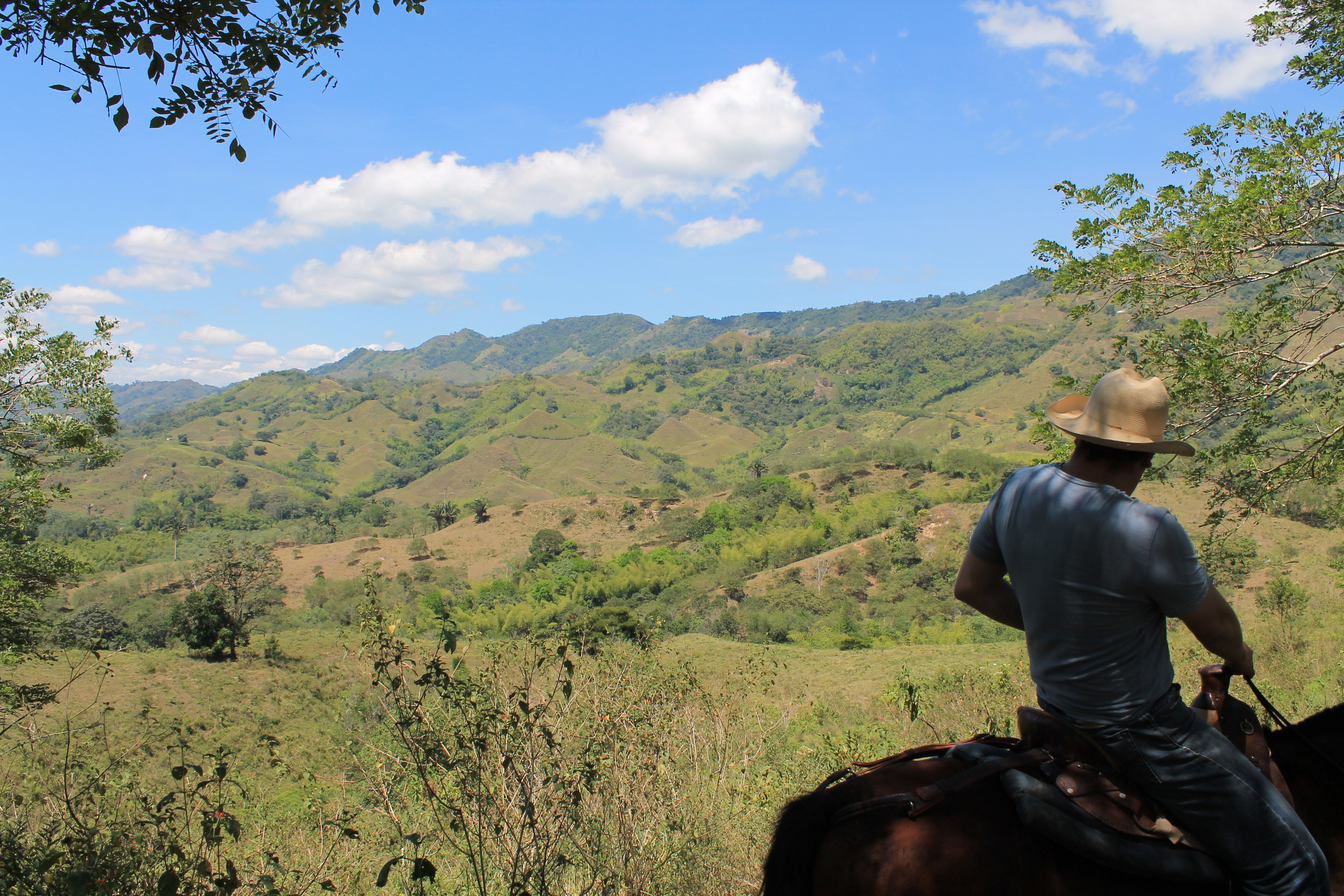 PAISAJE CULTURAL CAFETERO_COLOMBIA