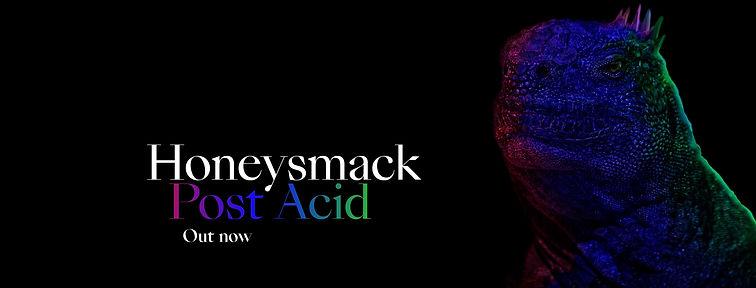 post acid banner.jpg
