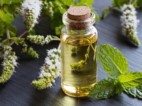 Essential Oils: Peppermint
