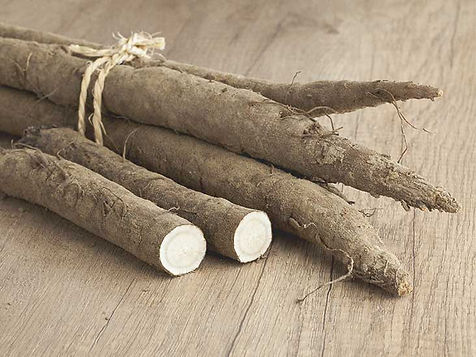 TN Scientific The Hangover Pill Research Article Burdock Root on brown wooden table in a bundle tied with twine