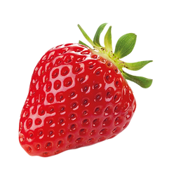 Elby_ASSETS_FOOD_Strawberry-04.png