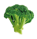Elby_ASSETS_FOOD_Broc-04.png