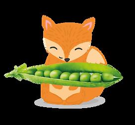 Fox_Food_01-03.png