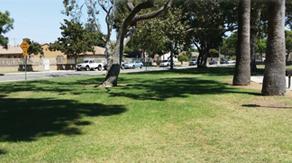 Introducing James Foisia Park